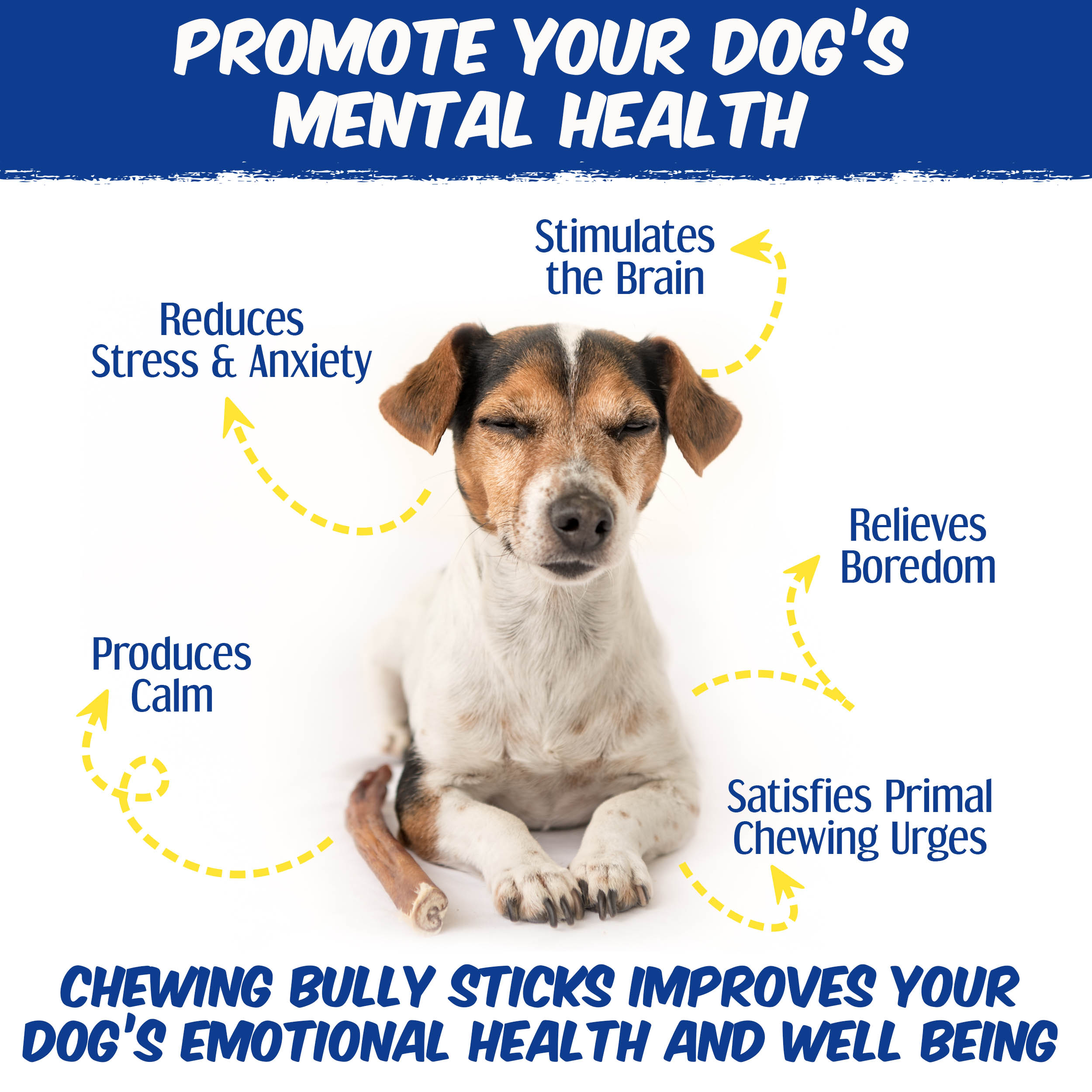 thumbnail 12 - Shadow River 6 Inch REGULAR All Natural Premium Beef Bully Stick Dog Chew Treats