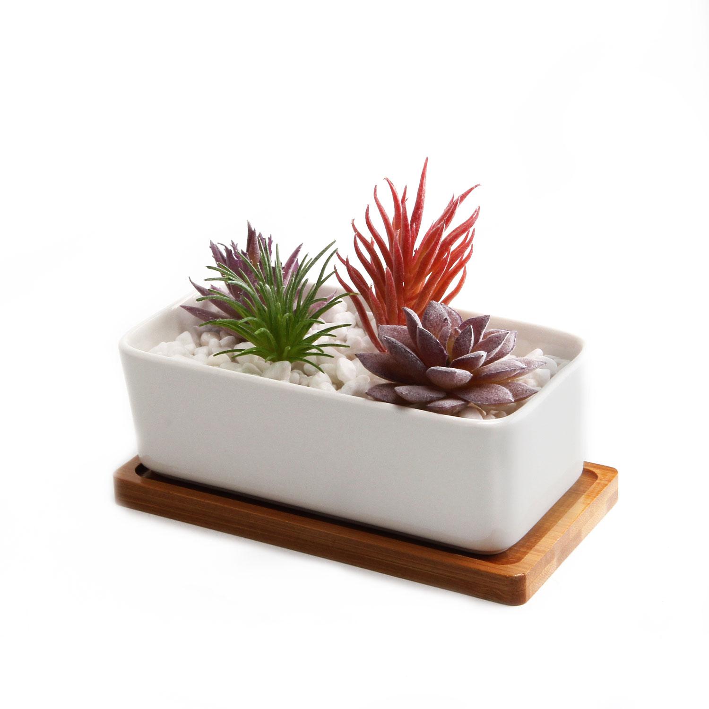 T4u 6 5 ceramic white rectangle succulent plant pot for 6 ceramic flower pots