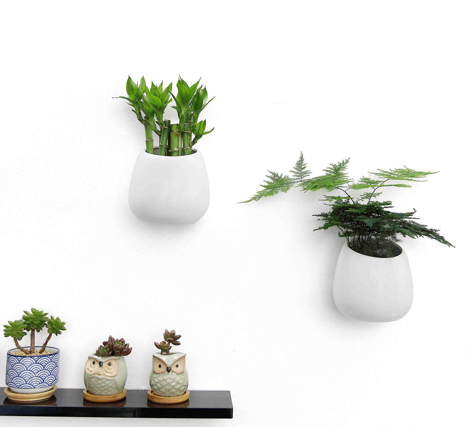 Wall Mounted Ceramic Flower Plant Vase Hanging Planters