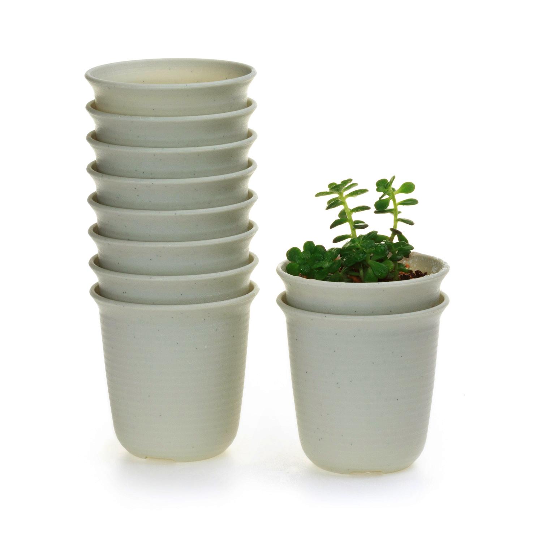 10x 3 In (environ 7.62 Cm) Plastique Rond Succulentes Plantes Pot De Fleur Soucoupe Plateaux Beige T4u-afficher Le Titre D'origine 50% De RéDuction