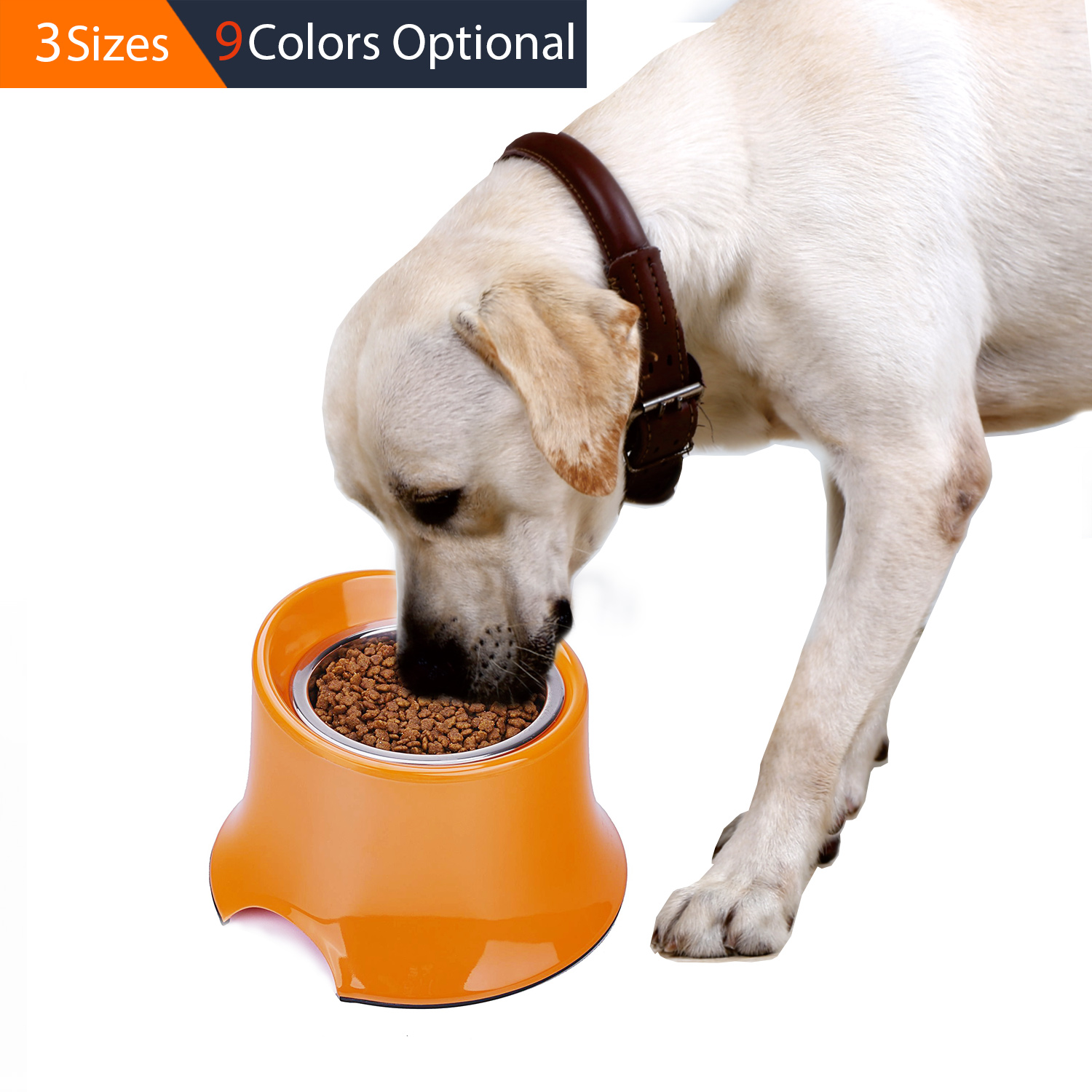 and fnehthor cat dog on raised single feeder pets stands images bowls best pinterest diy bowl stand