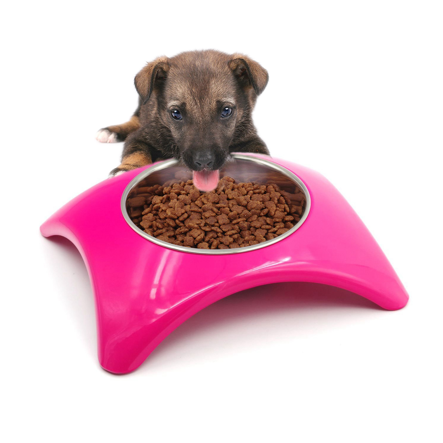 petsafe quick feeder pet feed smart feeders p view