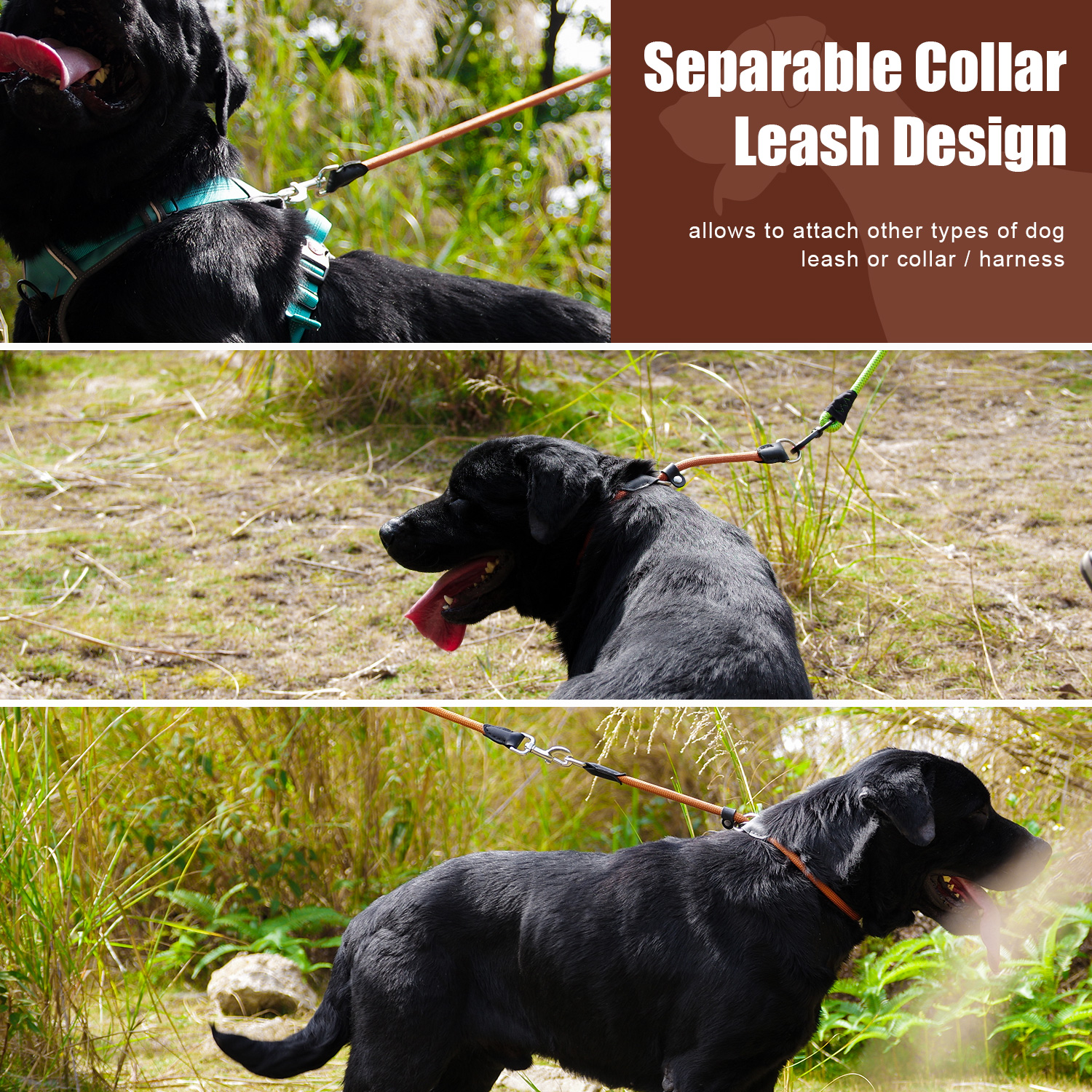 Dual-Double-Dog-Leash-Walking-No-Tangle-Lead-2-Way-Coupler-For-2-Pet-Dogs thumbnail 28