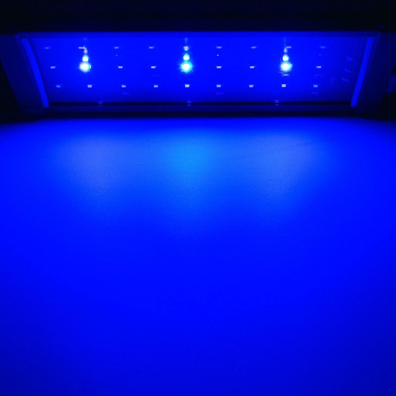 blau weiss meerwasser s wasser aquarium tank led beleuchtung aufsatzleuchte ebay. Black Bedroom Furniture Sets. Home Design Ideas