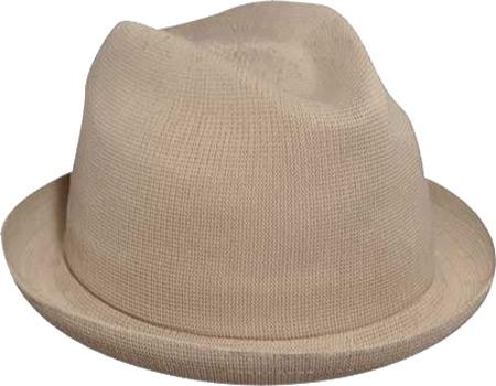 Men's Kangol Tropic Player Hat, , large, image 2