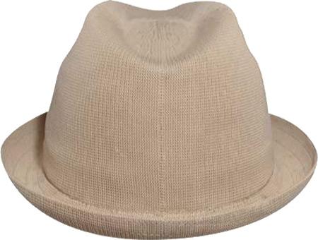 Men's Kangol Tropic Player Hat, , large, image 3