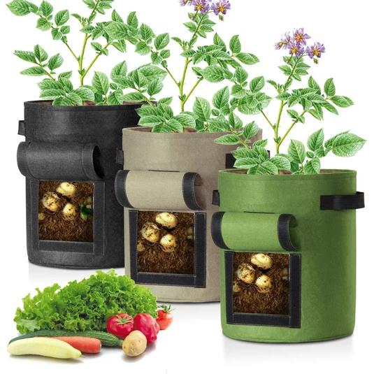 potato bags, eco business, wholesale company