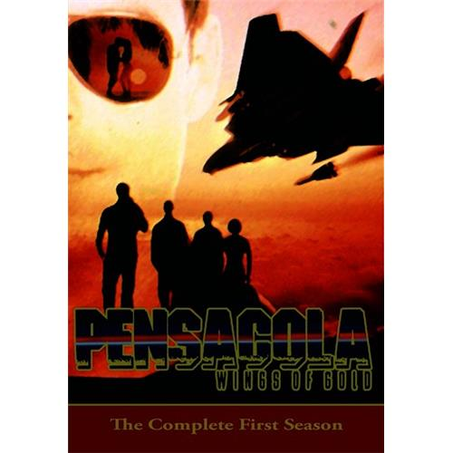 Pensacola: Wings of Gold -- The Complete First Season (5 DVD Set) DVD-9 191091198469