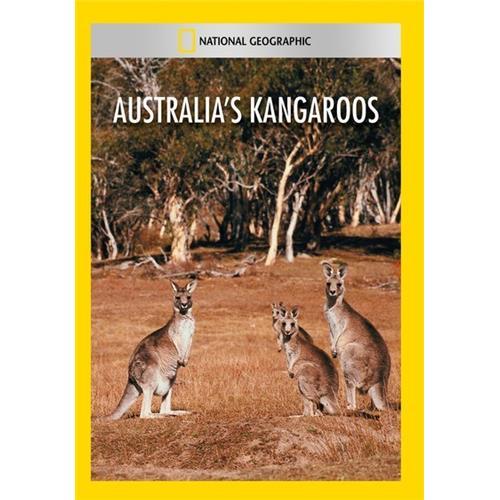 Australias Kangaroos - Documentary Movies and DVDs