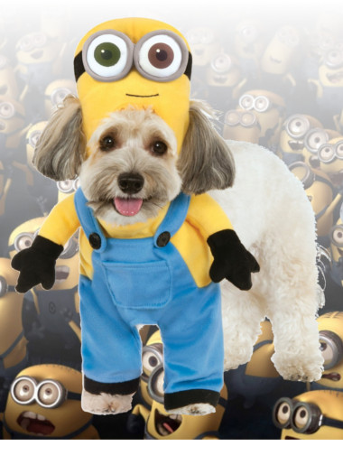 Halloween Costumes for Pets & Halloween Costumes and Accessories Store | Blockbustercostumes.com