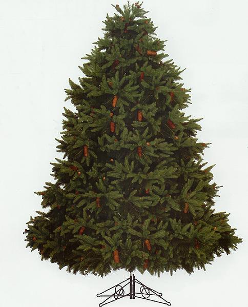 9' Full Fresh Cut Durango Spruce Pre Lit Christmas Tree