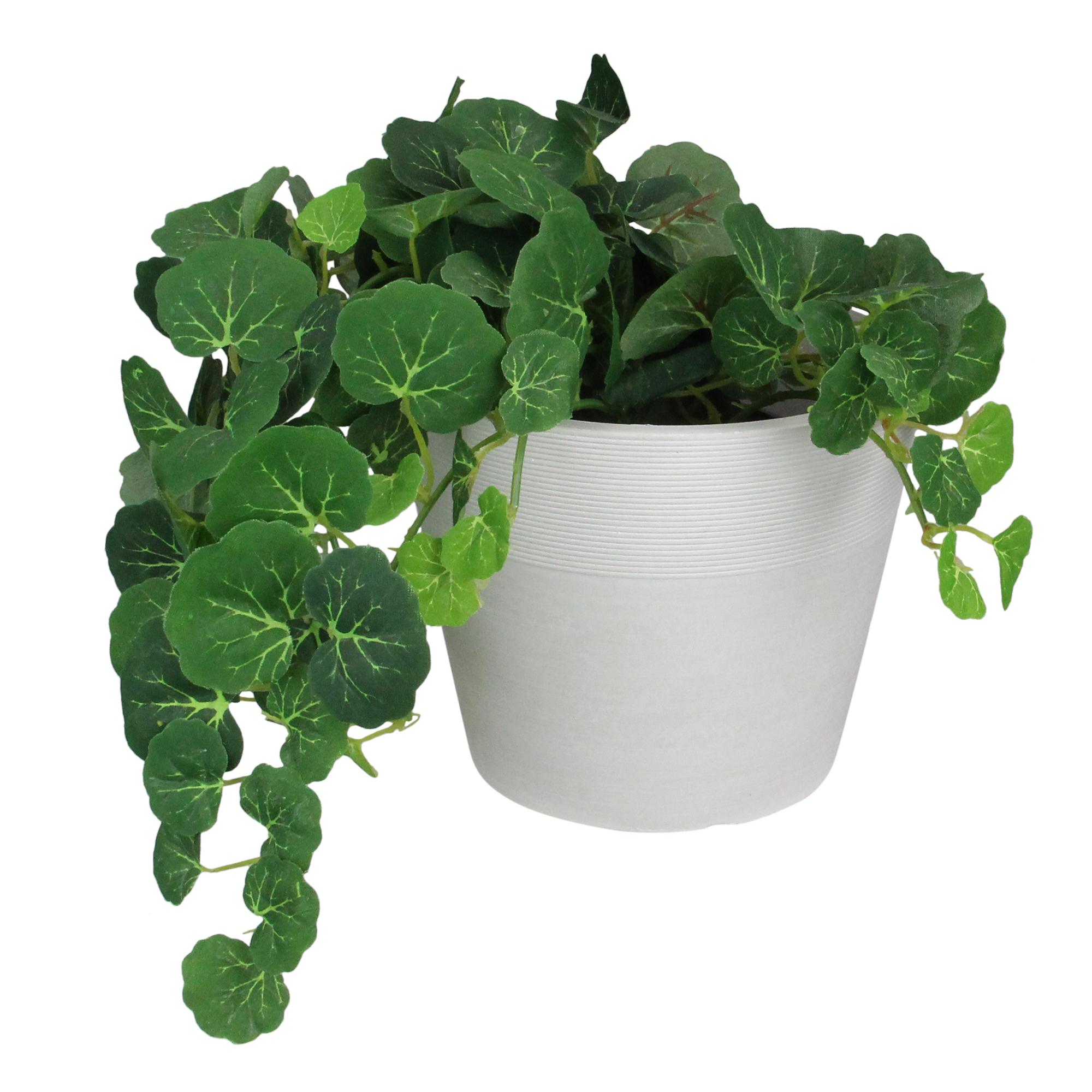 "Northlight 6/"" Brown Ribbed Rim Round Eco-Friendly Flower Planter"