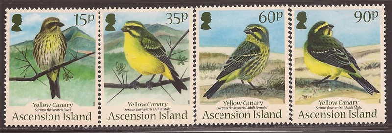 Ascension 2010 Gelbe Kanarienvogel Vögel 4 Stempelset #1004-7 1k-011