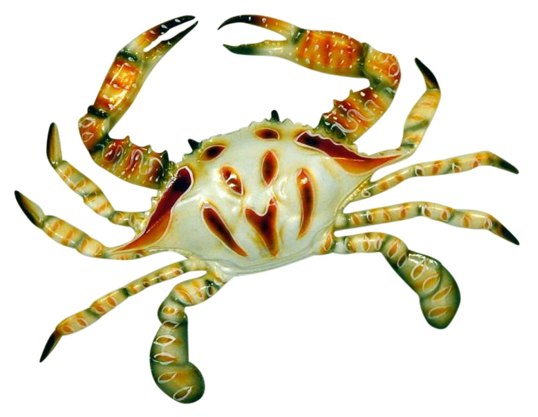 6 inch Florida Purse Crab Beach Tiki Bar Wall Decor