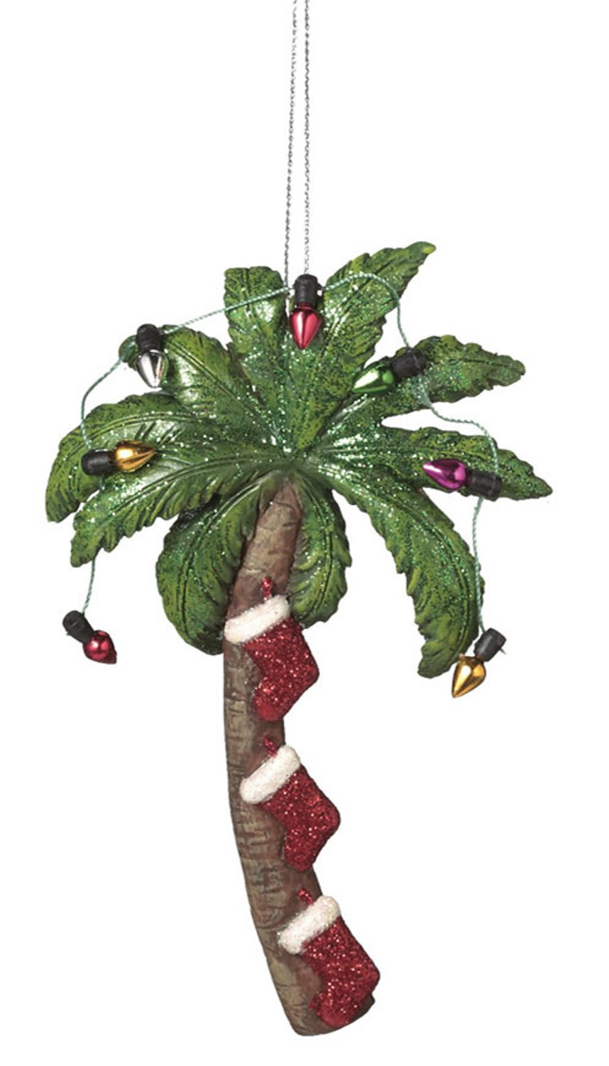Stockings Hanging Under Palm Tree Decorated For Christmas Holiday