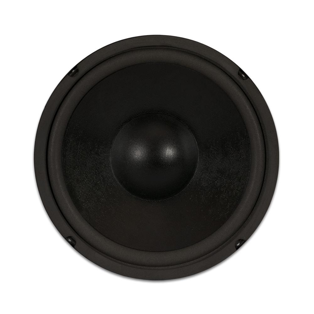 goldwood sound gw 410d dual voice coil 10 woofer 220w 6ohm replacement speaker ebay. Black Bedroom Furniture Sets. Home Design Ideas