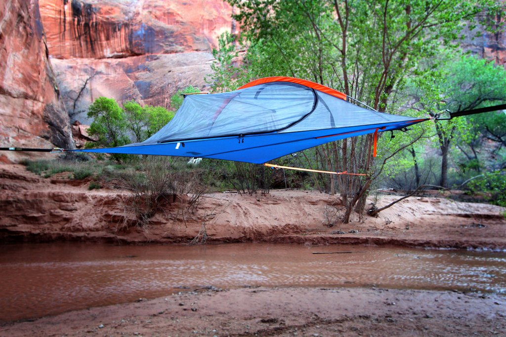 ... Picture 3 of 3 & Tentsile Flite Plus 2 Person Tree Tent F2FOR Forest Green | eBay