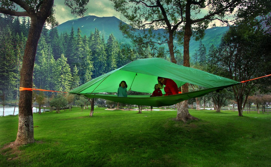 ... Picture 3 of 3 & Tentsile Vista 3 Person Tree Tent vFor Forest Green | eBay