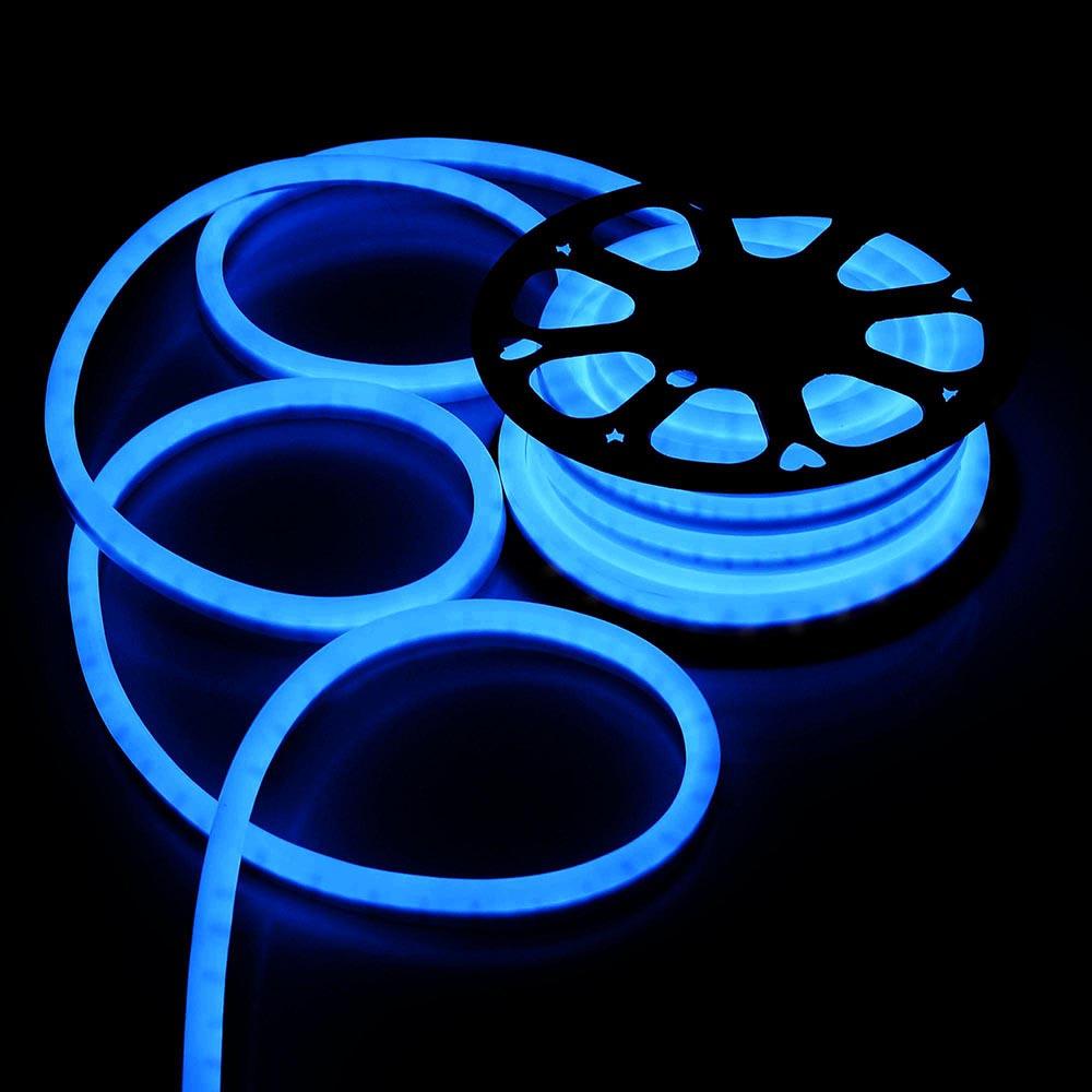 Delight 50 led neon rope light flex tube sign holiday wedding delight 50 039 led neon rope light flex aloadofball Choice Image