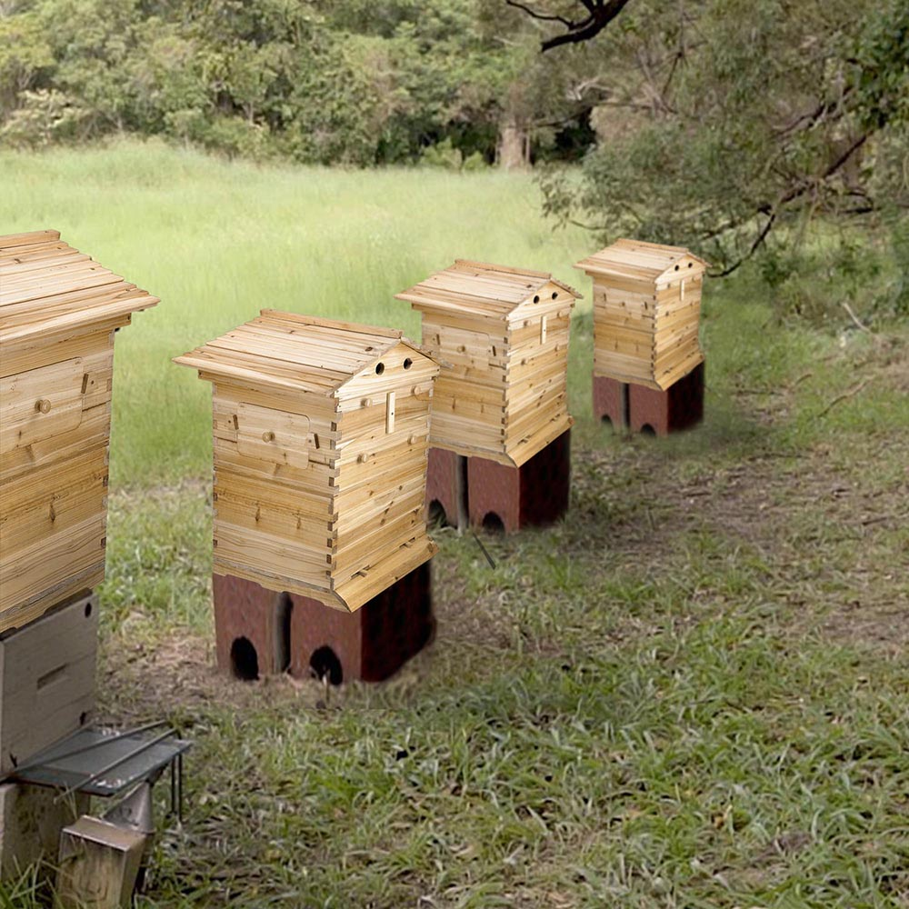Bee Hive 3 Layers For 7 Auto Flow Honey Frames Wooden Raw Bee Hive Beekeepers