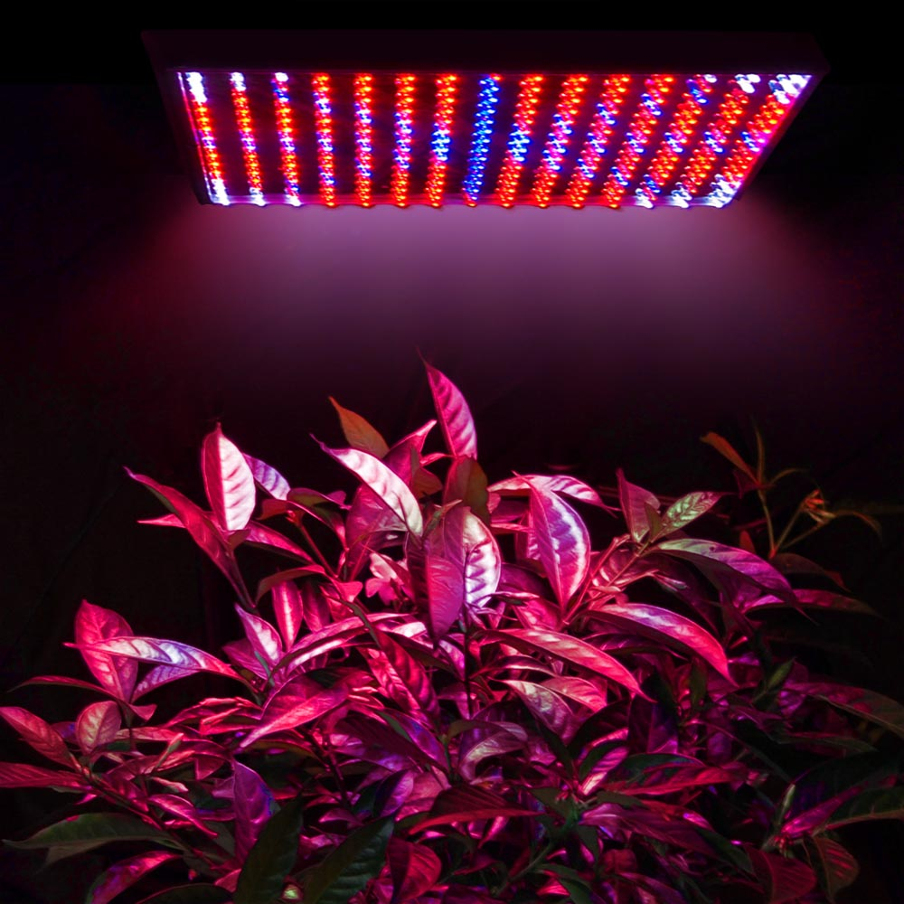 225LED Grow Light Lamp Full Spectrum Blue Red Orange White Quad Band Plant  Panel 640671031790 | EBay