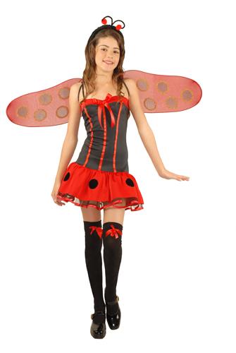 Teen Winged Lady Bug Girls Halloween Costume