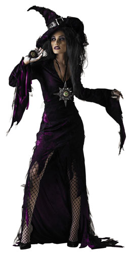 Sorceress Adult Witch Halloween Costume  sc 1 st  eBay & Sorceress Adult Witch Halloween Costume | eBay