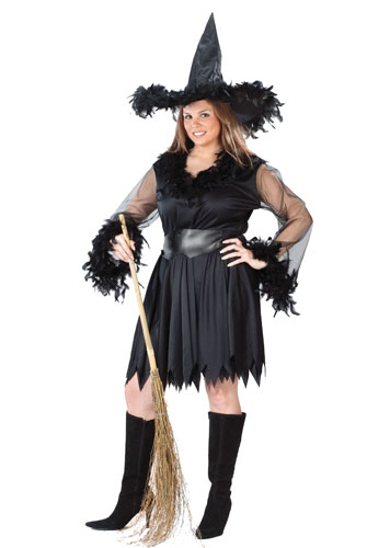 Sexy Witch Costume Plus Size