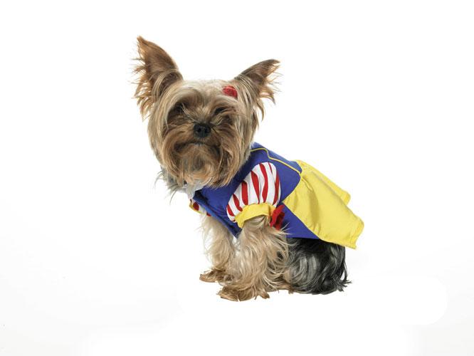 Snow White Puppy Pet Halloween Costume XS