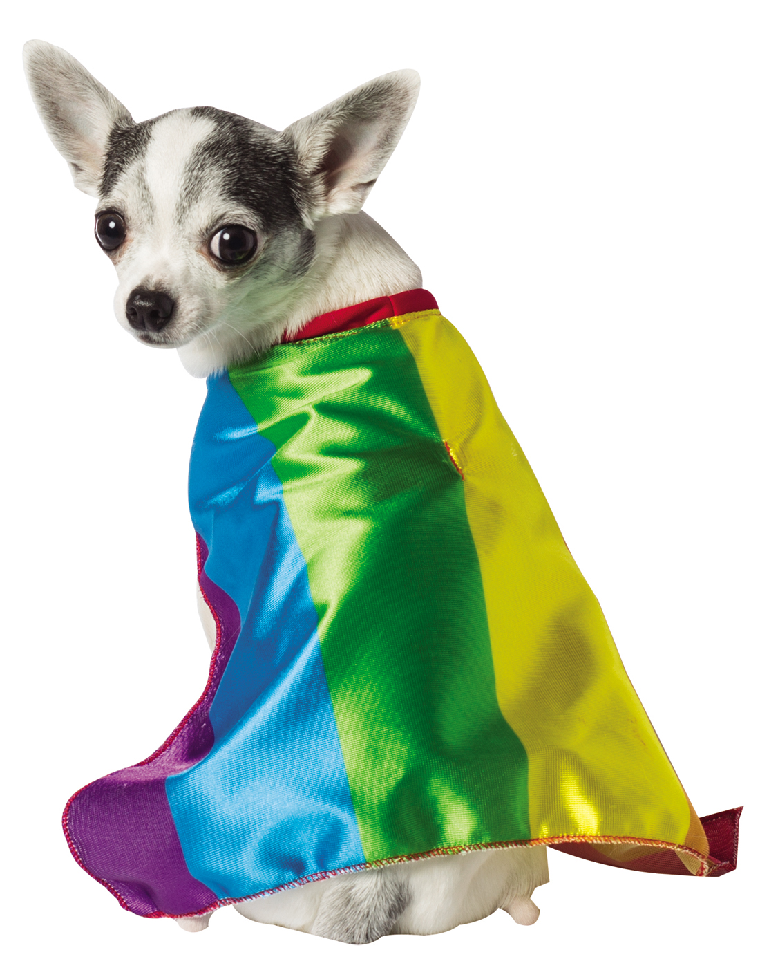 Details about Rainbow Colorful Flag Pet Dog Cat Pride Carnival Costume Cape