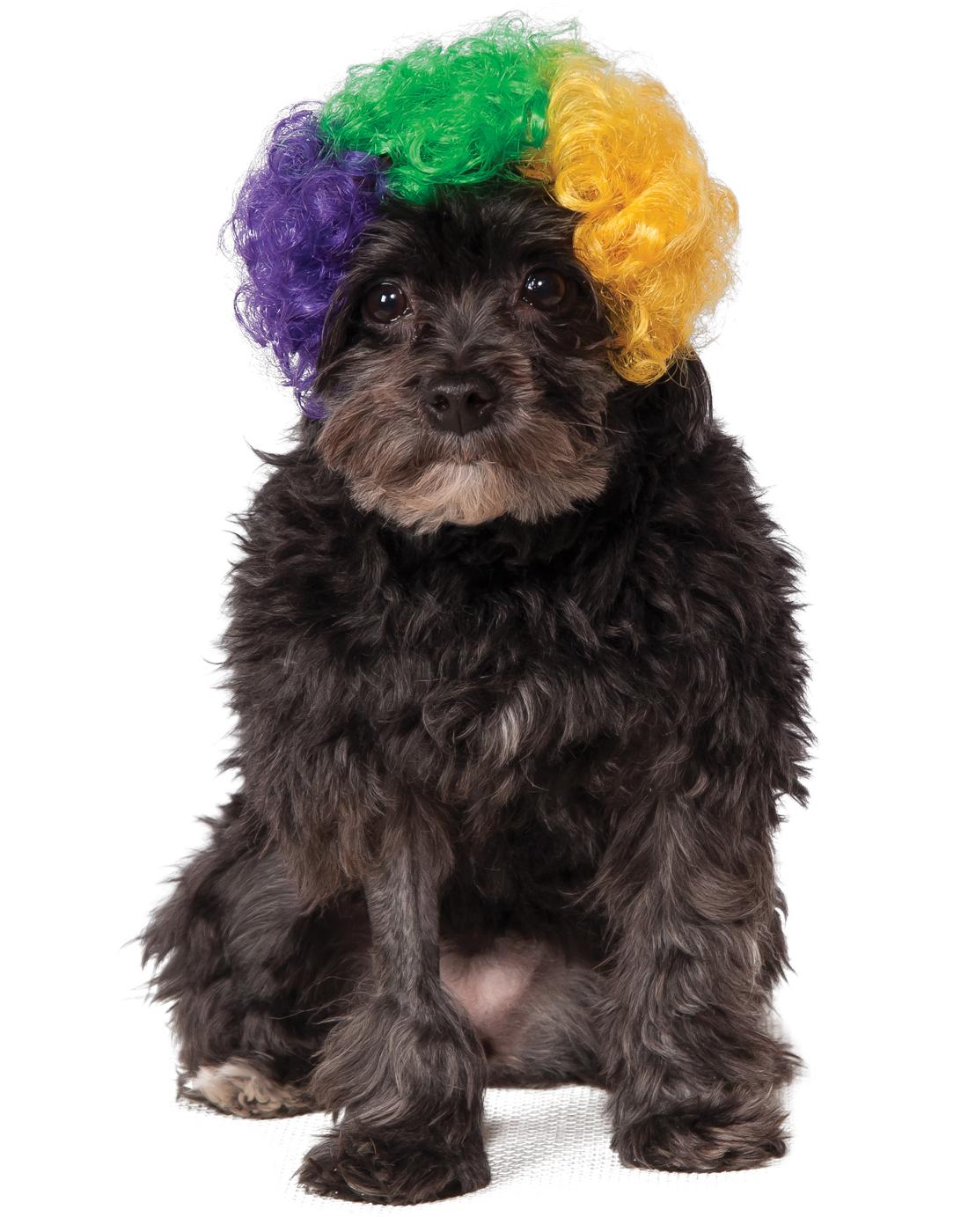 Mardi Gras Pet Tri Colored Dog Cat Afro Clown Costume Wig-M-L