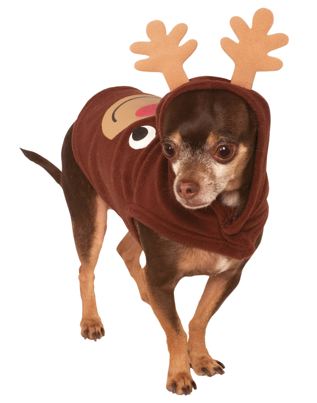 Dog Christmas Sweater.Details About Pet Ugly Christmas Sweater Reindeer Rudolf Dog Cat Hoodie