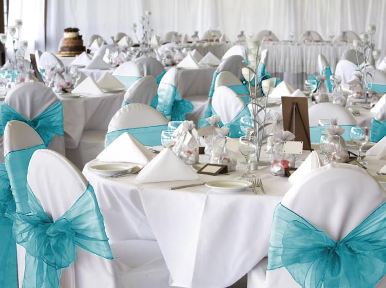 10 Turquoise Aqua Organza Chair Covers Sash Bow Wedding