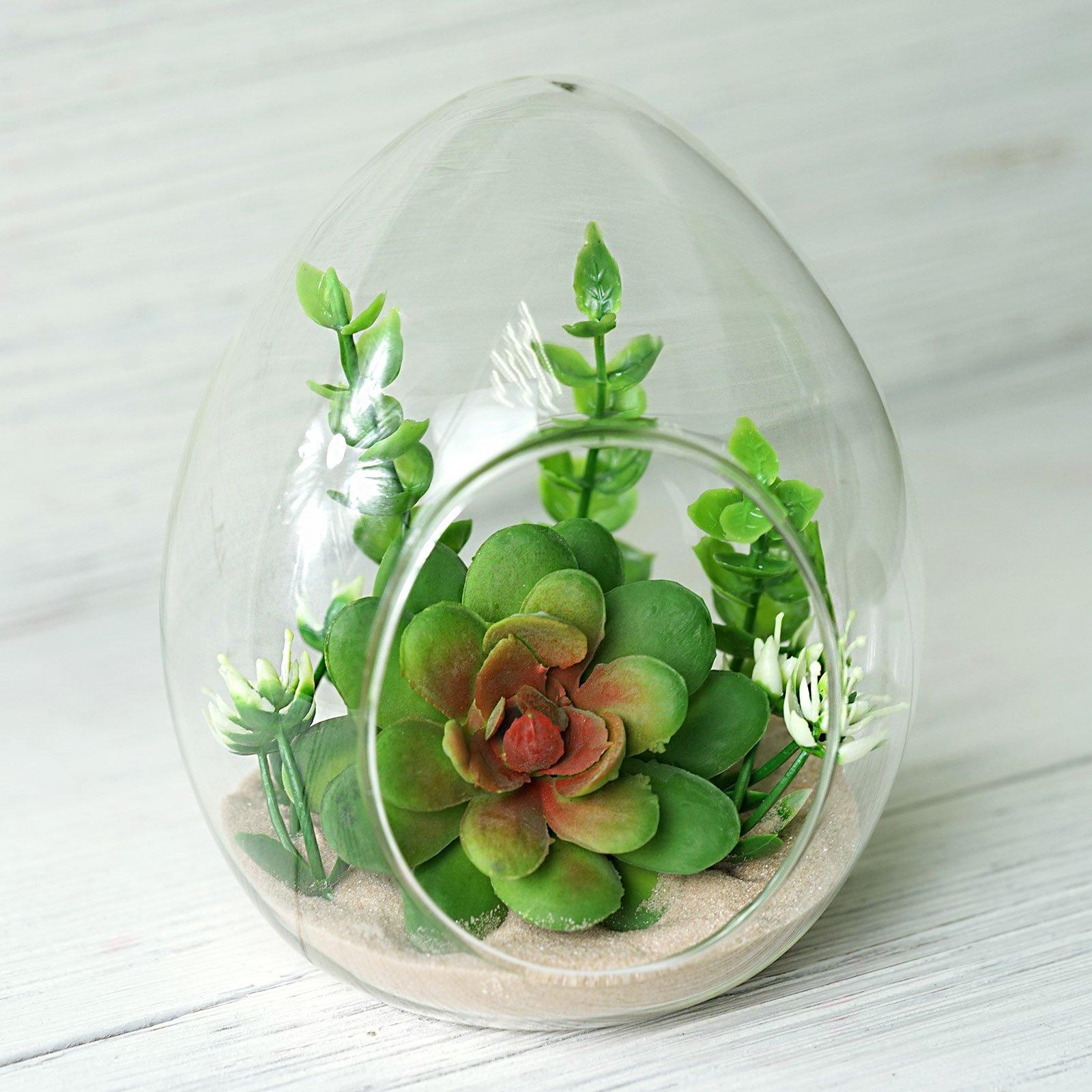 6 Clear Glass Egg Terrariums Centerpiece Wedding Party Wholesale Decorations Ebay
