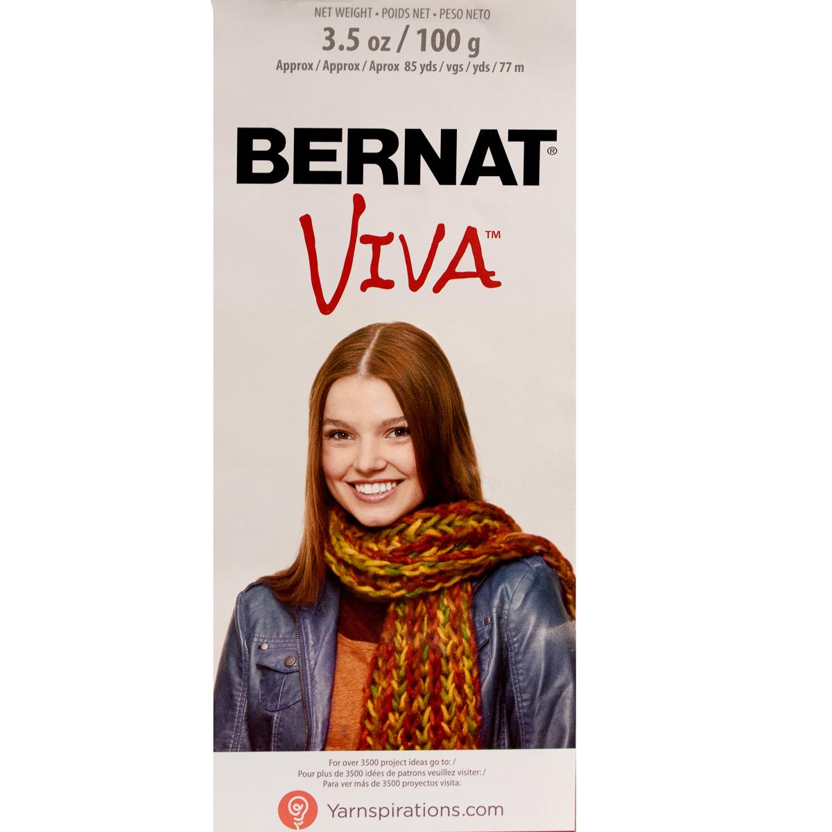3pk-Bernat-Viva-Acrylic-Blend-Yarn-Super-Bulky-6-Knitting-Crochet-Skeins-Soft thumbnail 10