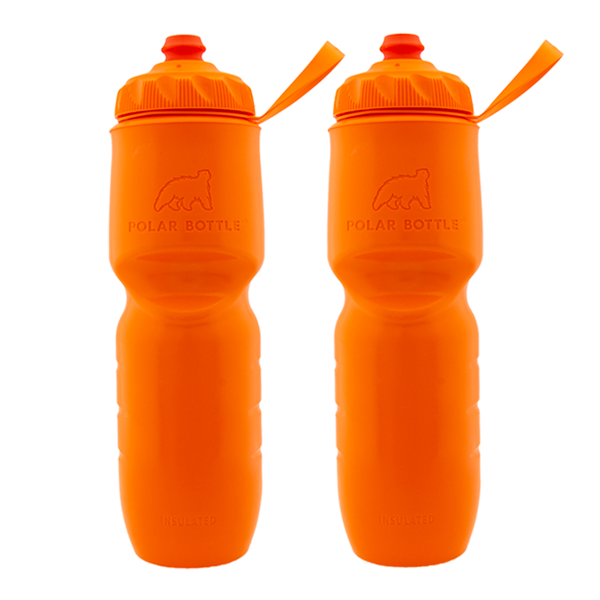 Water Bottle Set: 2pk Insulated Water Bottle Set, 24oz Water Bottle Handheld
