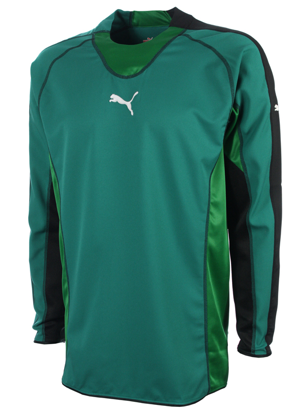 PUMA evoTRG Soccer Training T-Shirt | eBay |Cool Puma Soccer Shirts