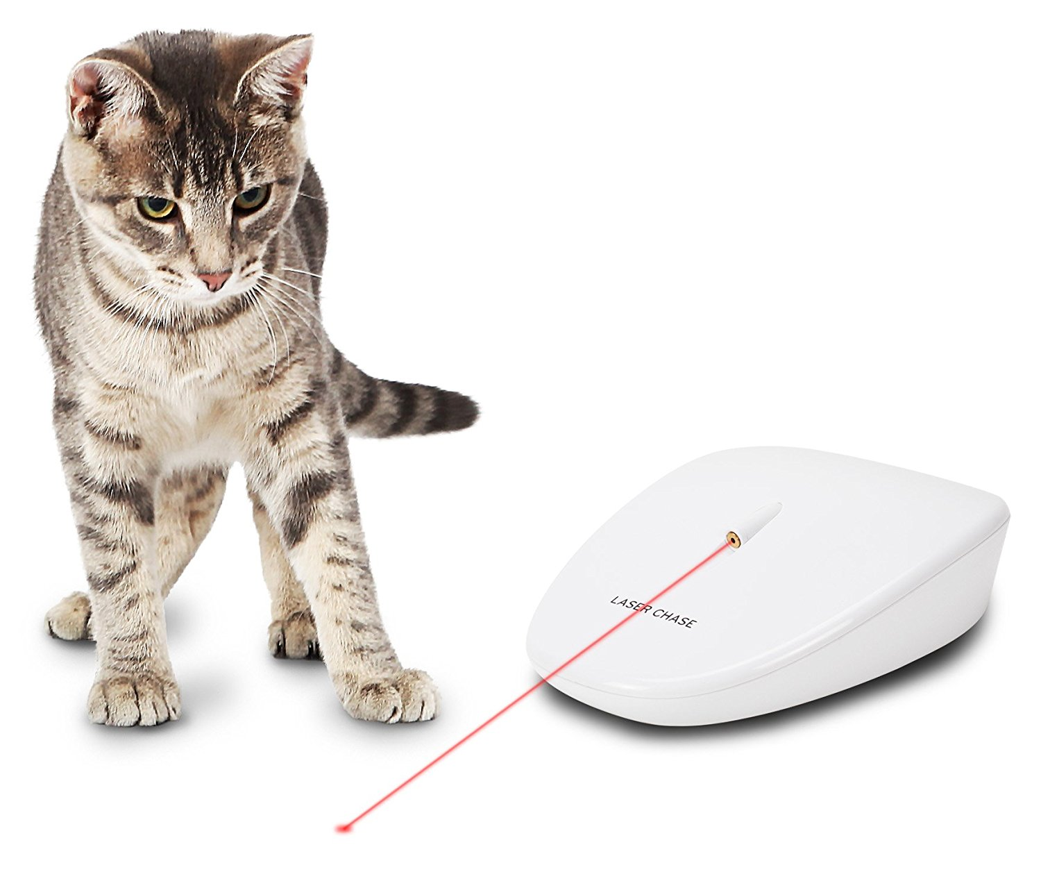Petsafe Laser Chase Automatic Laser Light Toy For Cats