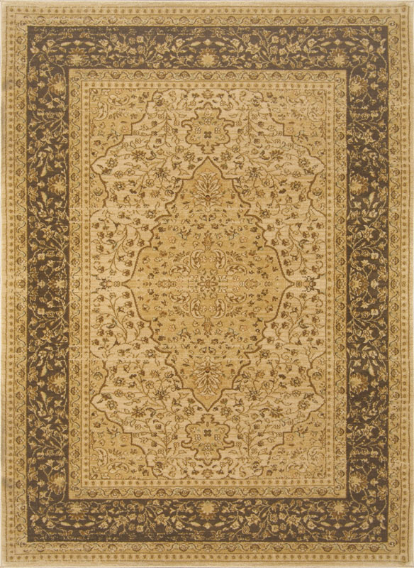 Oriental Cream Brown Border Area Rug 9x12 Persian 7776