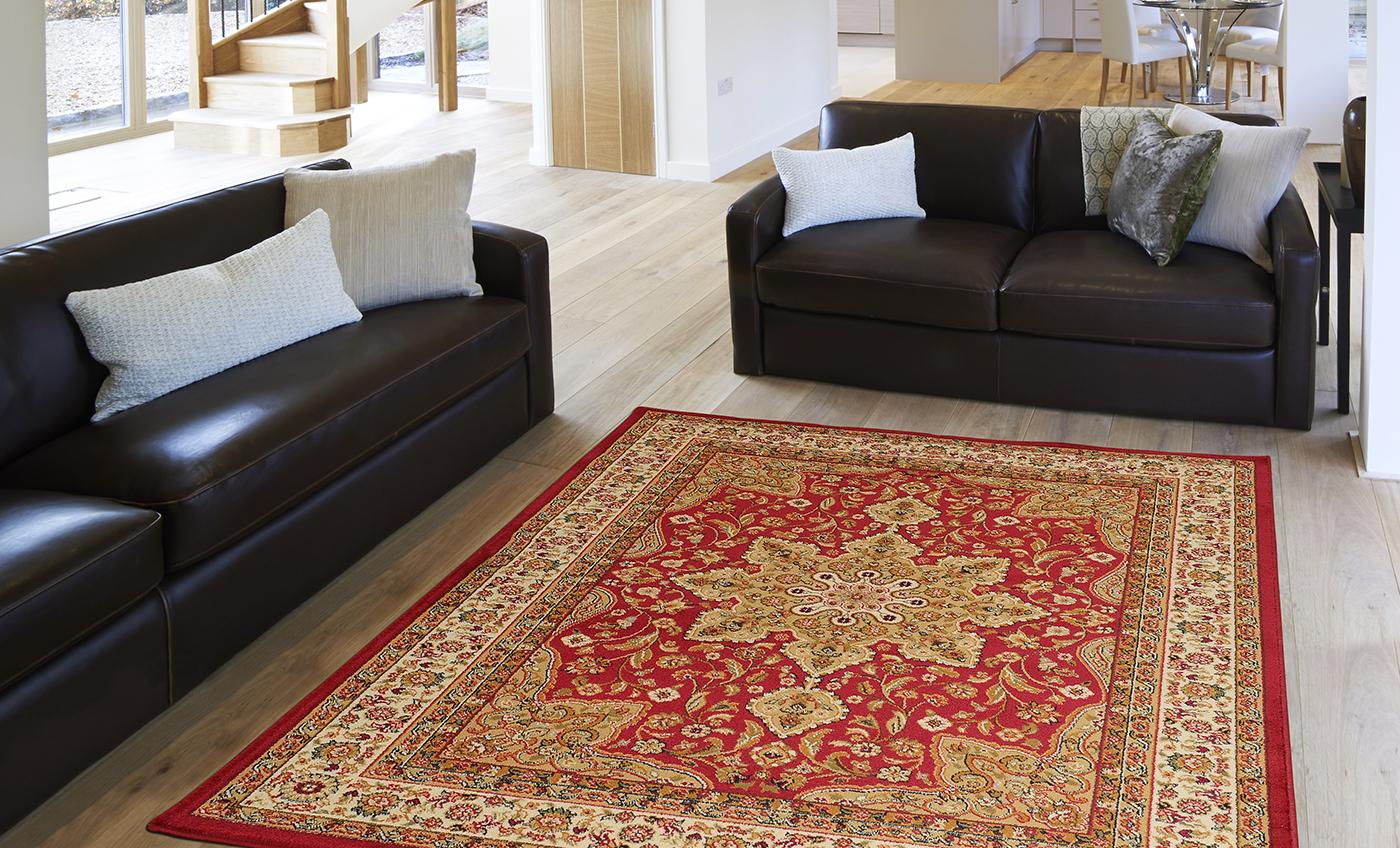 Rug For Living Room Ebay