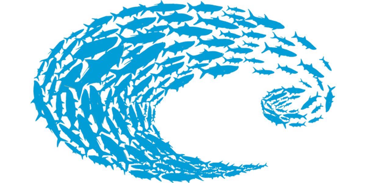 Costa Del Mar Logo Schoolin Decal