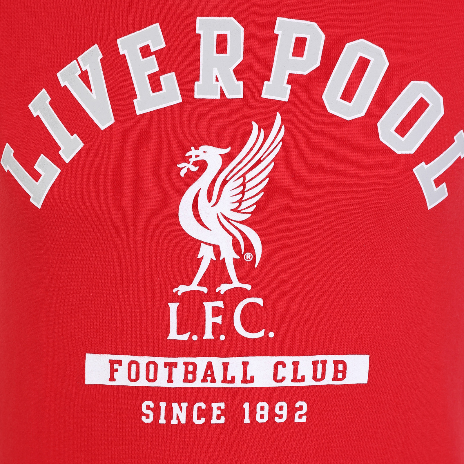 98c87f01a1a Liverpool FC Official Football Gift Kids Crest Long Sleeve Raglan T ...