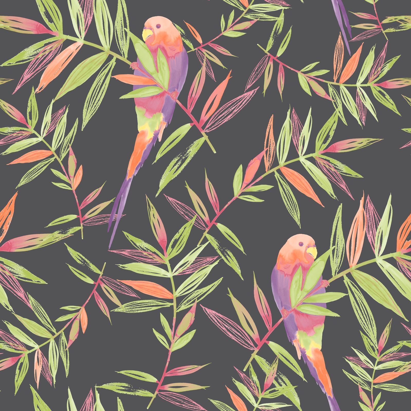 Vintage Style Tropical Bird And Flowers Background: Birds Wallpaper Tropical Parrot Floral Leaves Jungle Black