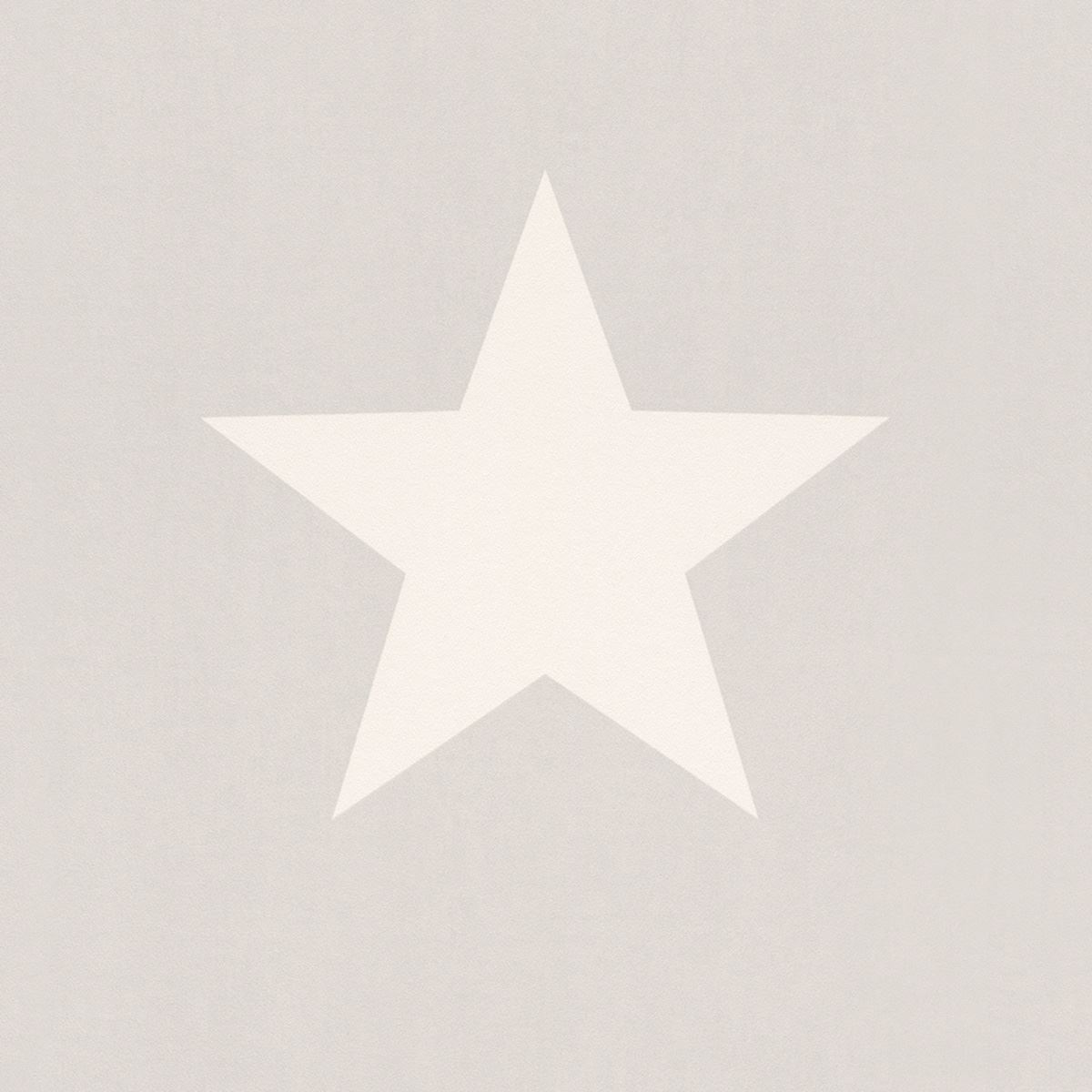 Star-Wallpaper-Teens-Kids-Stars-Bedroom-Feature-Luxury-White-amp-Grey-By-Rasch thumbnail 3