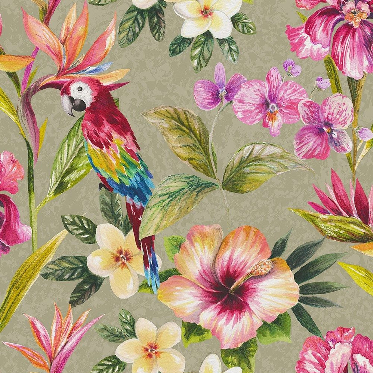 Tropical Parrot Wallpaper Birds Flowers Floral Leaves Leaf