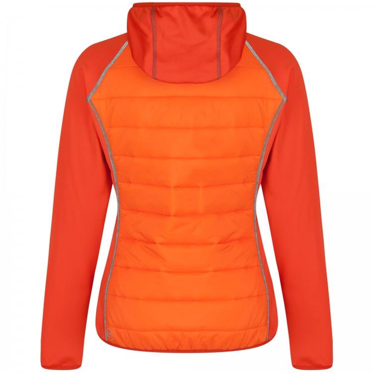 Regatta-Andreson-II-Womens-Water-Repellent-Full-Zip-Jacket thumbnail 5